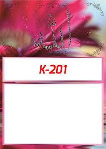 53KI201