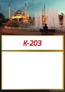 53KI203