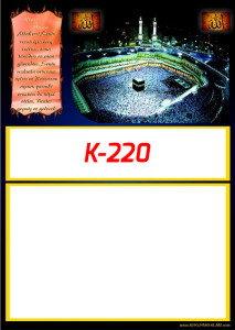 53KI220